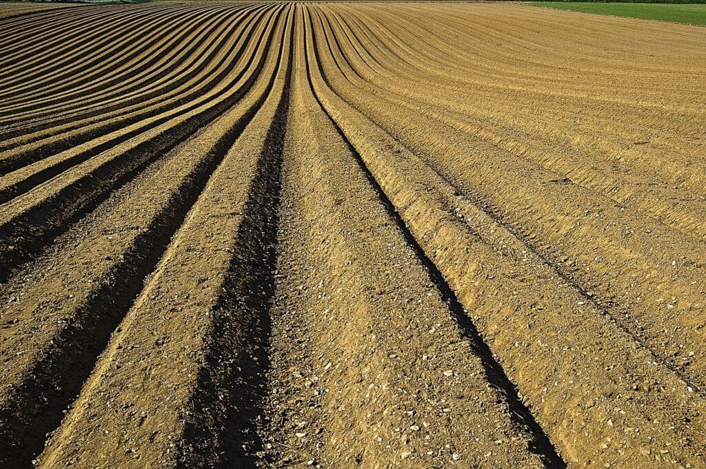 eDPZ – aktivirana aplikacija za postupak revalorizacije naknade za korištenje državnog poljoprivrednog zemljišta