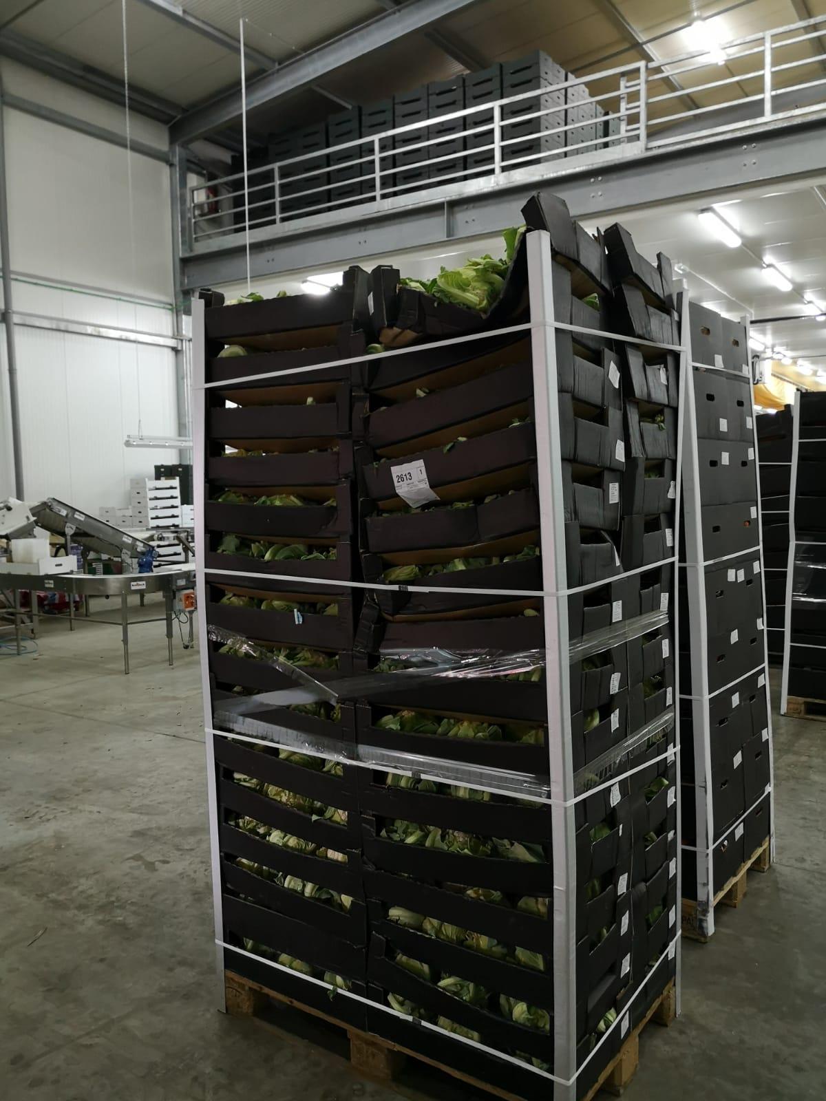 Smanjanje otpada hrane - VeeMee program